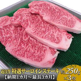 【ふるさと納税】近江牛特選サーロインステーキ約250g×3枚 【牛肉・お肉】