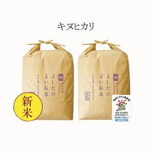 【ふるさと納税】令和元年産よしだのよいお米 近江米キヌヒカリ5kg×2 【お米】