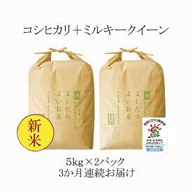 【ふるさと納税】令和2年産よしだのよいお米 近江米農家が食べてるお米 10kg×3回 【定期便・お米・米】