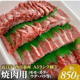 【ふるさと納税】近江牛A5ランク 焼肉用 約850g (モモ・カタ・ウデ・バラ系等) 【お肉・牛肉・焼肉・バーベキュー・モモ・バラ(カルビ)】 お届け:お盆・年末年始の出荷不可。8月・12月の申込みは、翌月配送となる場合がございます。