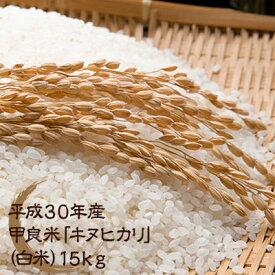【ふるさと納税】平成30年産甲良米「キヌヒカリ」(白米)15kg 【お米・精米・キヌヒカリ】お届け:入金確認月の翌月中旬〜下旬頃
