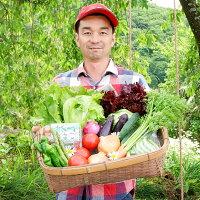 【ふるさと納税】季節の野菜と卵セット旬野菜10〜15種類と平飼い卵の詰め合わせ