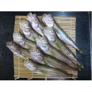 【ふるさと納税】ハタハタ(超特大)干物 一夜干し 450g ×2箱 【魚貝類・干物】