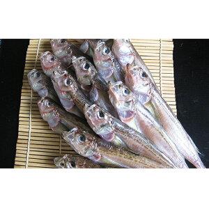 【ふるさと納税】ハタハタ(特大)干物 一夜干し 450g ×2箱 【魚貝類・干物】