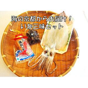 【ふるさと納税】海の京都からお届け いか三昧セット 【魚貝類・イカ・魚介類】 お届け:11月10日以降ご入金のお品のお届けは、翌1月中旬以降のお届けとなります。
