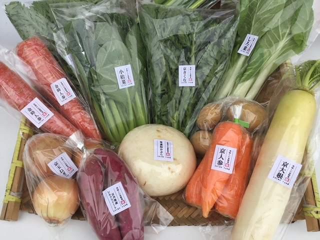 【ふるさと納税】【定期便】旬の京野菜 毎月お届けBコース(全6回)