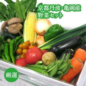 ファーマーズマーケットたわわ朝霧京都丹波・亀岡産野菜セット