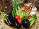 【ふるさと納税】【定期便】《アスカ有機農園》(栽培期間中農薬・化学肥料不使用)旬の京野菜セットS*毎月お届け全12回