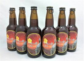 【ふるさと納税】クラフトビール『光秀の夢1582(ブラウンエール)』12本セット ≪明智光秀のまち 亀岡 大河ドラマ 記念≫