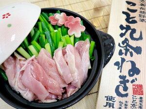【ふるさと納税】京都産九条ねぎ 鶏の葱鍋セット4人前(2人前×2)