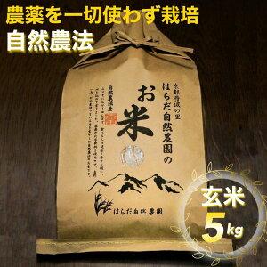【ふるさと納税】自然農法<農薬を一切使わず栽培>玄米5kg≪令和2年 京都丹波産 無農薬米栽培向き 厳選品種 にこまる≫