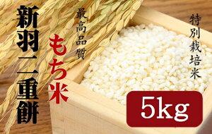 【ふるさと納税】新羽二重餅【もち米】5kg