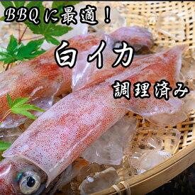 【ふるさと納税】BBQに最適!白イカ(ケンサキイカ)調理済み 約2kg入り(8〜16匹) ※小分け真空包装