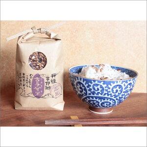 【ふるさと納税】歴史ある地で復活した古代米【黒米玄米】(300g×2袋)