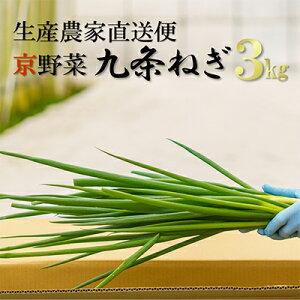 【ふるさと納税】生産農家直送 京野菜・九条ねぎ 約3kg 【野菜・ねぎ・京野菜・九条ねぎ・ネギ】