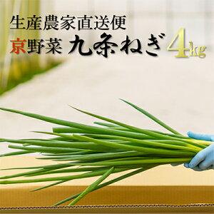 【ふるさと納税】生産農家直送 京野菜・九条ねぎ 約4kg 【野菜・ねぎ・京野菜・九条ねぎ・ネギ】