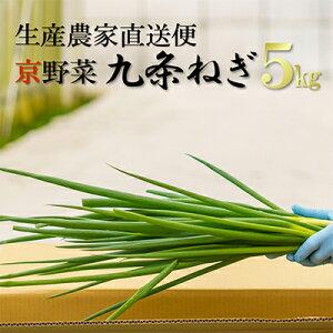 【ふるさと納税】生産農家直送 京野菜・九条ねぎ 約5kg 【野菜・ねぎ・京野菜・九条ねぎ・ネギ】