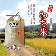 【ふるさと納税】京丹波町和知地区の美しい環境で作られた「わち米」令和元年度産5kg