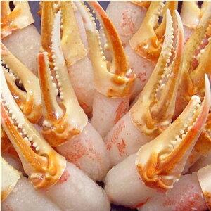 【ふるさと納税】本ずわい蟹 蟹爪セット (1kg)【1093695】