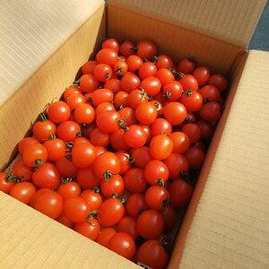 【ふるさと納税】通年糖度8以上のミニトマト「アマメイド」2kg【1101037】