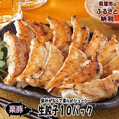 [ふるさと納税] R145B 【感謝2パック増量!】栗豚で作った生餃子10パック+2パック(144個)