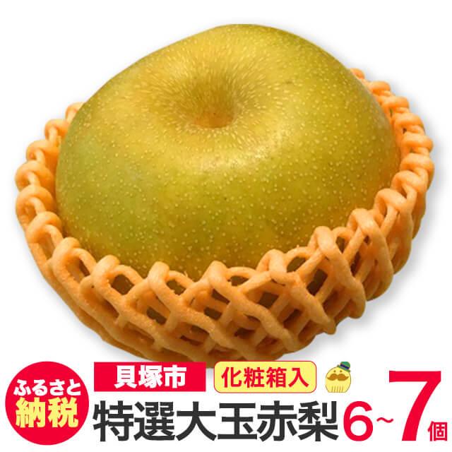 [ふるさと納税]R150B 特選大玉 赤梨おまかせ6個〜7個 化粧箱入り