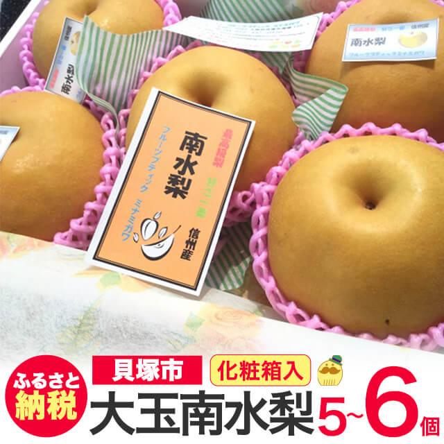 [ふるさと納税]R151B【特選】なんと甘い!大玉南水梨5〜6玉化粧箱入り