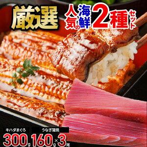 【ふるさと納税】厳選!人気の海鮮 2種セット(キハダまぐろ赤身ブロック、国産うなぎ蒲焼)