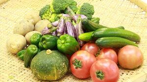 【ふるさと納税】《4月~発送》季節の旬野菜の詰め合わせ(前期)