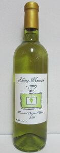 【ふるさと納税】シャインマスカットのワイン 720ml やや辛口 希少 レア