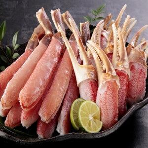 【ふるさと納税】【1】生ずわい蟹 しゃぶしゃぶ セット 約1kg(棒肉約500g+爪肉約500g)_NA01