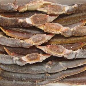 【ふるさと納税】【12】生 ずわい蟹 5L サイズ 約3kg(約6〜8肩)NA05