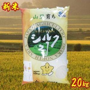 【ふるさと納税】令和元年産 大阪エコシルク21(キヌヒカリ) 白米 20kg