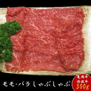 【ふるさと納税】京都肉(亀岡牛・丹波牛) モモ しゃぶしゃぶ 約300g