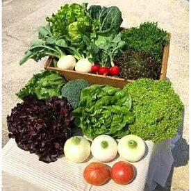 【ふるさと納税】H044*淡路島産新鮮野菜3点セット