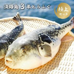 【ふるさと納税】BY39*淡路島3年とらふぐ 極上セット(2人前)冷凍