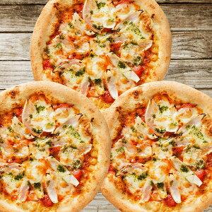 【ふるさと納税】AZ06*淡路島たまねぎが主役!厳選素材の手作りピザ(10枚+1枚)
