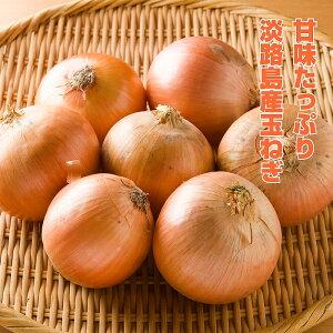 【ふるさと納税】BYF9:淡路島産 玉ねぎ 10kg(5kg×2箱)