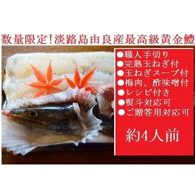 【ふるさと納税】AU57*淡路島黄金鱧!漁港直送で鮮度と味はここまで変わります!(約4人前)