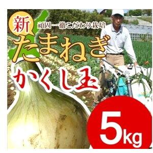 【ふるさと納税】CZ18*淡路島たまねぎ かくし玉5kg