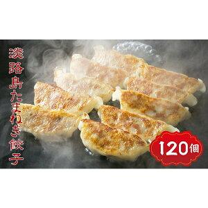 【ふるさと納税】CZ25*淡路島たまねぎたっぷりジューシー餃子120個個