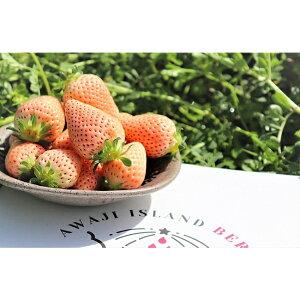 【ふるさと納税】EC01*淡路島産 白いちご『淡雪』 生果実