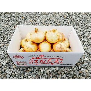 【ふるさと納税】CY49*淡路島玉葱 オリジナルブランド「はなたま」(中生) 5kg