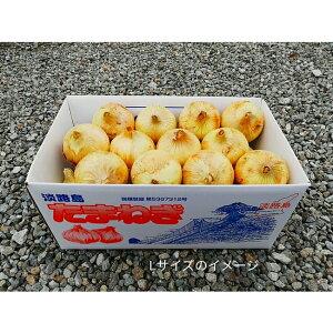 【ふるさと納税】CY43*今だけ収穫 淡路島新玉葱 (早生) 10kg