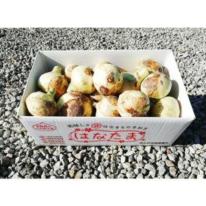 【ふるさと納税】CY74*淡路島産 セット栽培たまねぎ 5kg