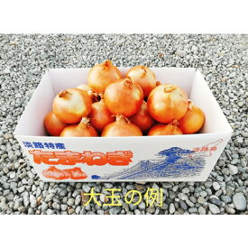 【ふるさと納税】CYA6:淡路島産 玉葱 10kg 中生大玉
