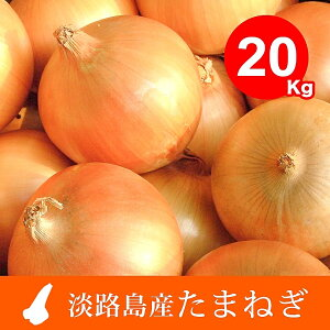 【ふるさと納税】EB19*【20kg】特選 淡路島たまねぎ なかて品種