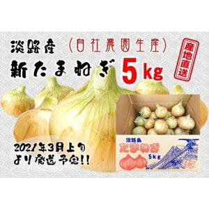 【ふるさと納税】FK05*淡路産新たまねぎ 5kg