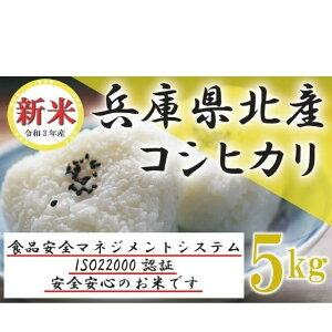 【ふるさと納税】お米 兵庫県丹波産コシヒカリ(こしひかり)5kg 【お米・コシヒカリ】