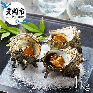 【ふるさと納税】活サザエ(1kg)12〜15個 / 魚 魚介類